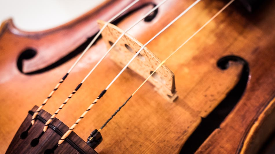 Close up of violin bridge and f hole