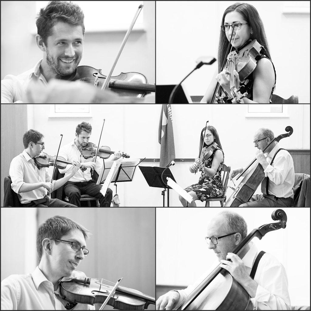 Kavolini Quartet Collage